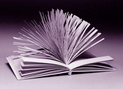 libro mas largo del mundo