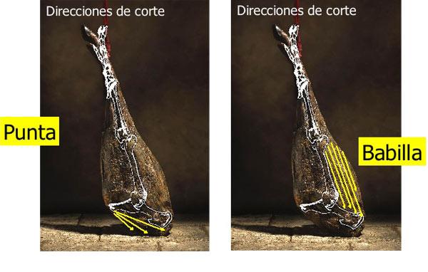 Direcciones-Corte2