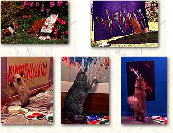 los gatos pintan